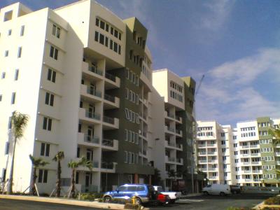 palacios-img3
